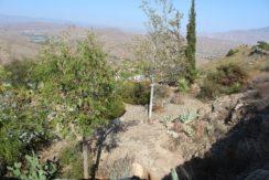 Cortijo Alhama de Almeria (6)
