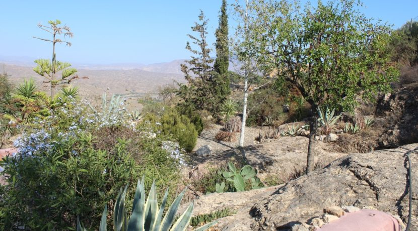 Cortijo Alhama de Almeria (9)